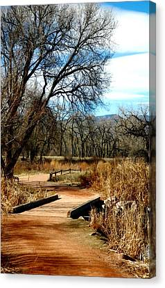 Fountain Creek Nature Center Canvas Print - Natures Walk by Michelle Frizzell-Thompson