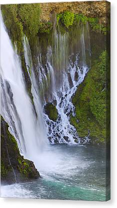 Natures Water Fountain Canvas Print by Loree Johnson