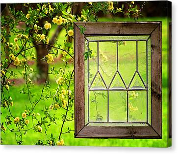Canvas Print featuring the photograph Nature's Window by Greg Simmons