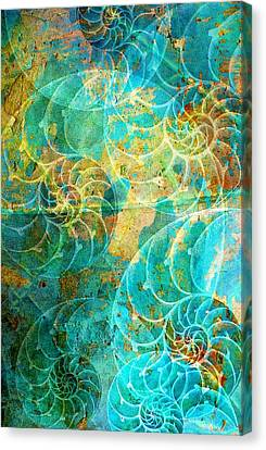 Nautilus Seashells In Aqua Canvas Print by Suzanne Powers