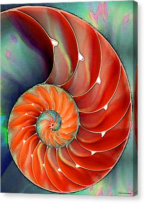 Seashells Canvas Print - Nautilus Shell - Nature's Perfection by Sharon Cummings