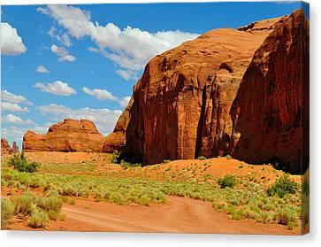 Navajo Country Canvas Print by Ruben Barbosa