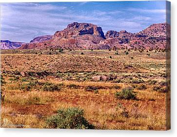 Navajo Nation Series 2 Canvas Print by Bob and Nadine Johnston