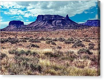 Navajo Reservation Series 1 Canvas Print by Bob and Nadine Johnston