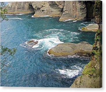 Neah Bay At Cape Flattery Canvas Print by Tikvah's Hope
