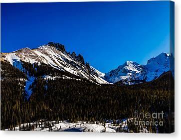 Near Cameron Pass Canvas Print by Jon Burch Photography