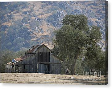Canvas Print featuring the photograph Nearly Gone by Debby Pueschel