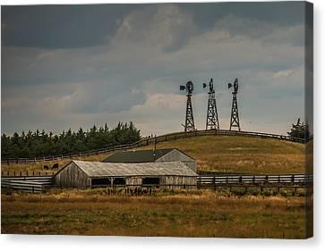 Nebraska Windmills Canvas Print by Paul Freidlund