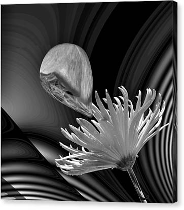 Nectar Of The Gods Bw Canvas Print by Barbara St Jean