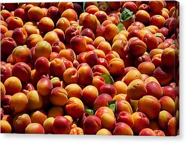 Nectarines For Sale At Weekly Market Canvas Print by Panoramic Images