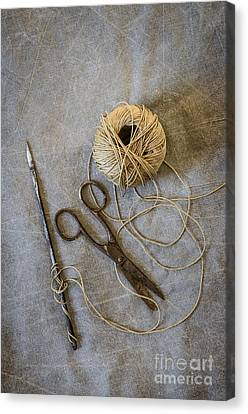 Needle And String Canvas Print by Carlos Caetano