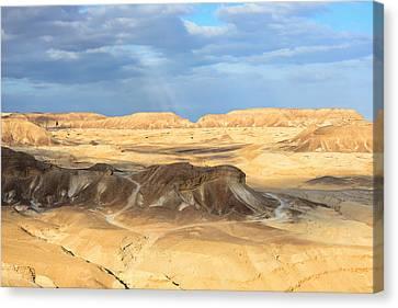 Negev Desert  Canvas Print