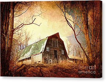 Neglected Canvas Print by A New Focus Photography