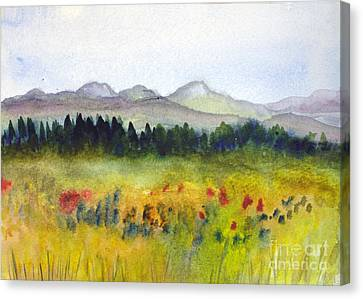 Nek Mountains And Meadows Canvas Print by Donna Walsh