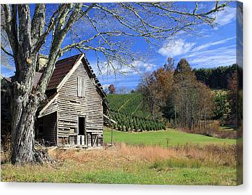 Nell's House Canvas Print