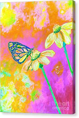 Neon Butterfly Canvas Print by Rhonda Lee