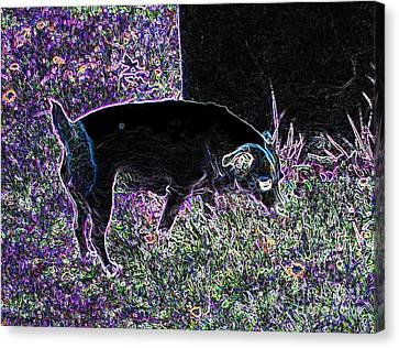 Neon Dog Canvas Print by Minding My  Visions by Adri and Ray