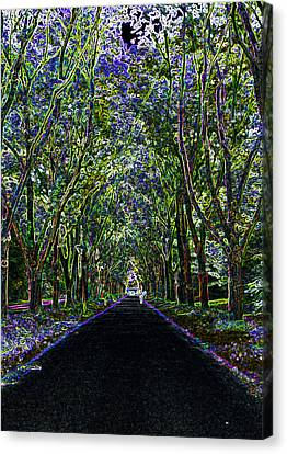 Neon Forest Canvas Print