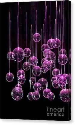 Neon  Nights Canvas Print by Evelina Kremsdorf