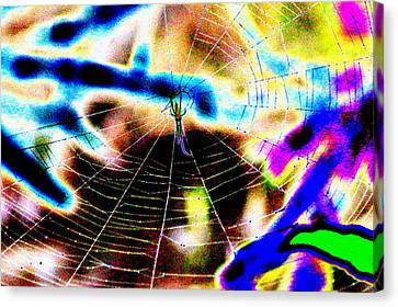 Neon Spider Canvas Print by Kim Pate