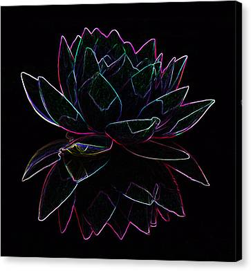 Neon Water Lily Canvas Print