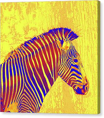Neon Zebra 2 - Yellow Canvas Print by Jane Schnetlage