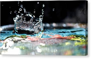Neptune's Crown Canvas Print by Lisa Knechtel