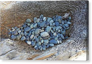 Canvas Print featuring the photograph Pebble Nest by Cheryl Hoyle