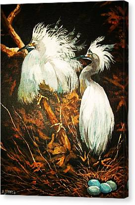 Nesting Egrets Canvas Print by Al Brown