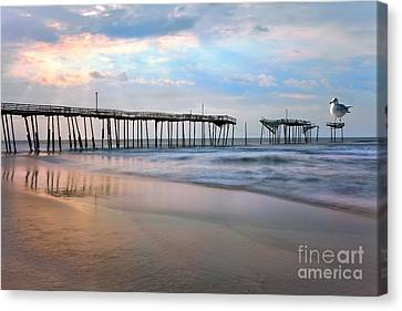 Nesting On Broken Dreams - Outer Banks Canvas Print