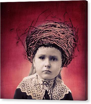 Nesting Series Girl With Lace Canvas Print by Susan McCarrell