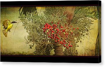 Canvas Print featuring the photograph Nesting Tropical Bird by Peggy Collins