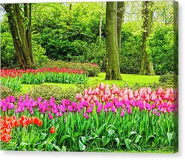 Netherlands, Lisse, Keukenhof Gardens Canvas Print