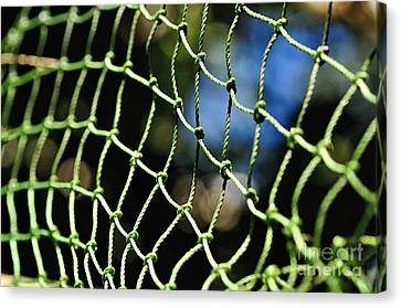 Netting - Abstract Canvas Print by Kaye Menner