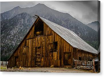 Nevada Barn Canvas Print by Mitch Shindelbower
