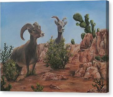Nevada Big Horns Canvas Print by Roseann Gilmore