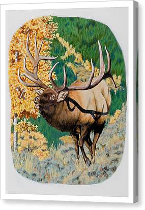 Nevada Nontypical Elk Canvas Print