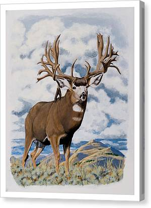 Faria Nevada Nontypical Mule Deer Canvas Print