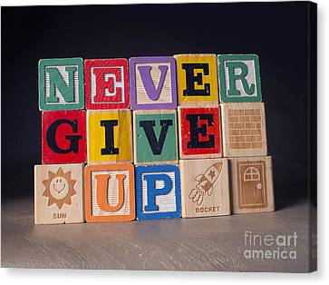 Never Give Up Canvas Print by Art Whitton