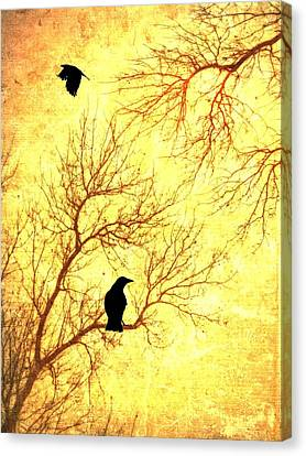 Nevermore Canvas Print by Dan Sproul