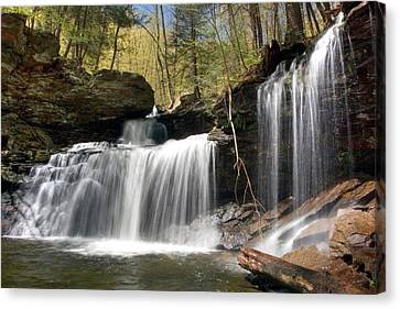 Canvas Print featuring the photograph New Beginnings At R. B. Ricketts Falls by Gene Walls
