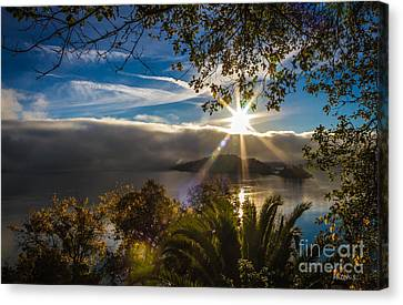 New Day Canvas Print by Mitch Shindelbower