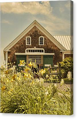 New England Farmhouse Canvas Print by Juli Scalzi