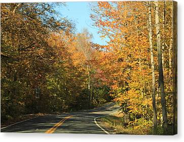 New England Road Canvas Print