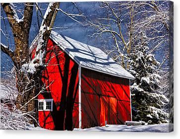 New England Winter Canvas Print by Karol Livote