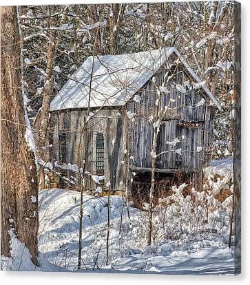 New England Winter Woods Square Canvas Print by Bill Wakeley