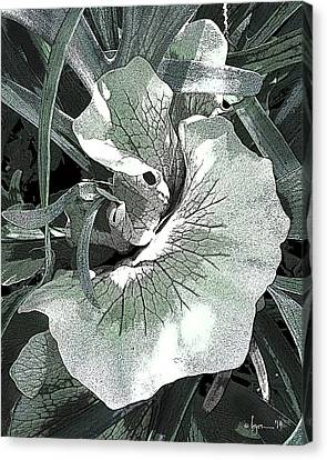 Canvas Print featuring the photograph New Growth On The Staghorn by Angela Treat Lyon