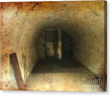 Canvas Print featuring the photograph New Jersey Military Cave by Denise Tomasura