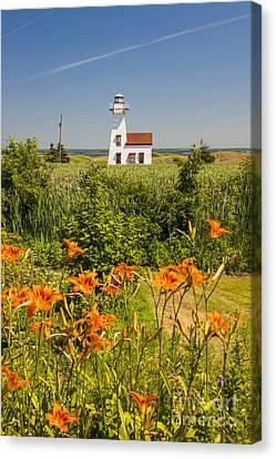 New London Range Rear Lighthouse Canvas Print by Elena Elisseeva