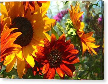 New Mexico Summer Sunflower Garden Canvas Print by Douglas MooreZart